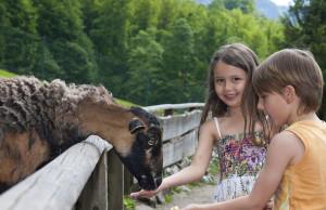 Frohnatur Hotel Garni Thiersee Hinterthiersee Tirol Urlaub Sommer Berge Wandern Kinder